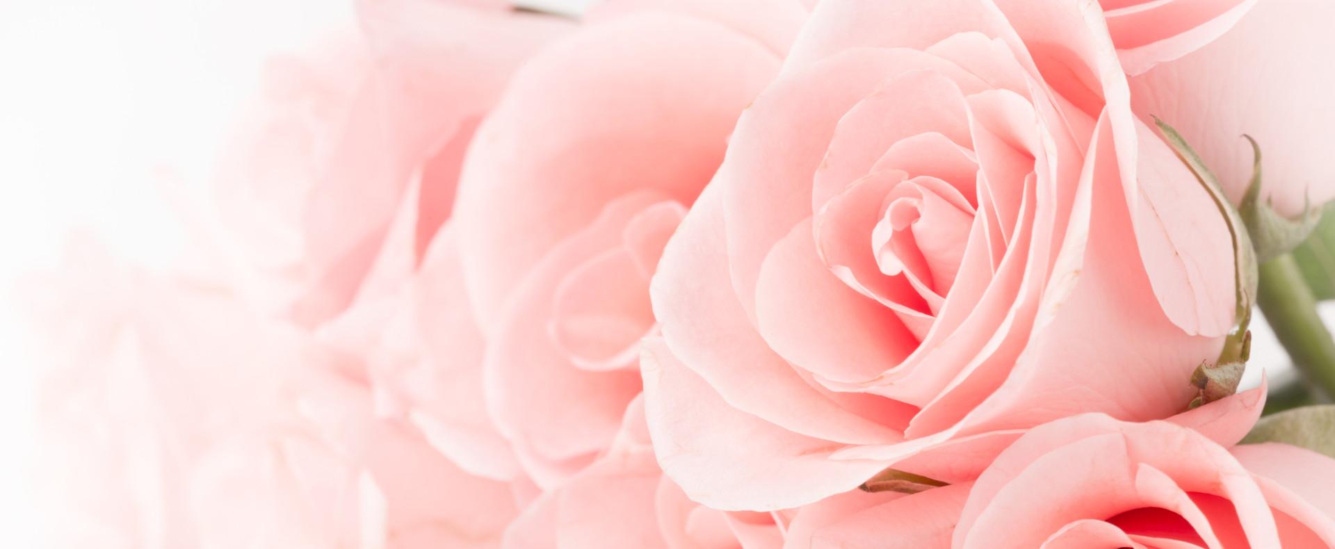 Strickler Blumen Gaerten (4)