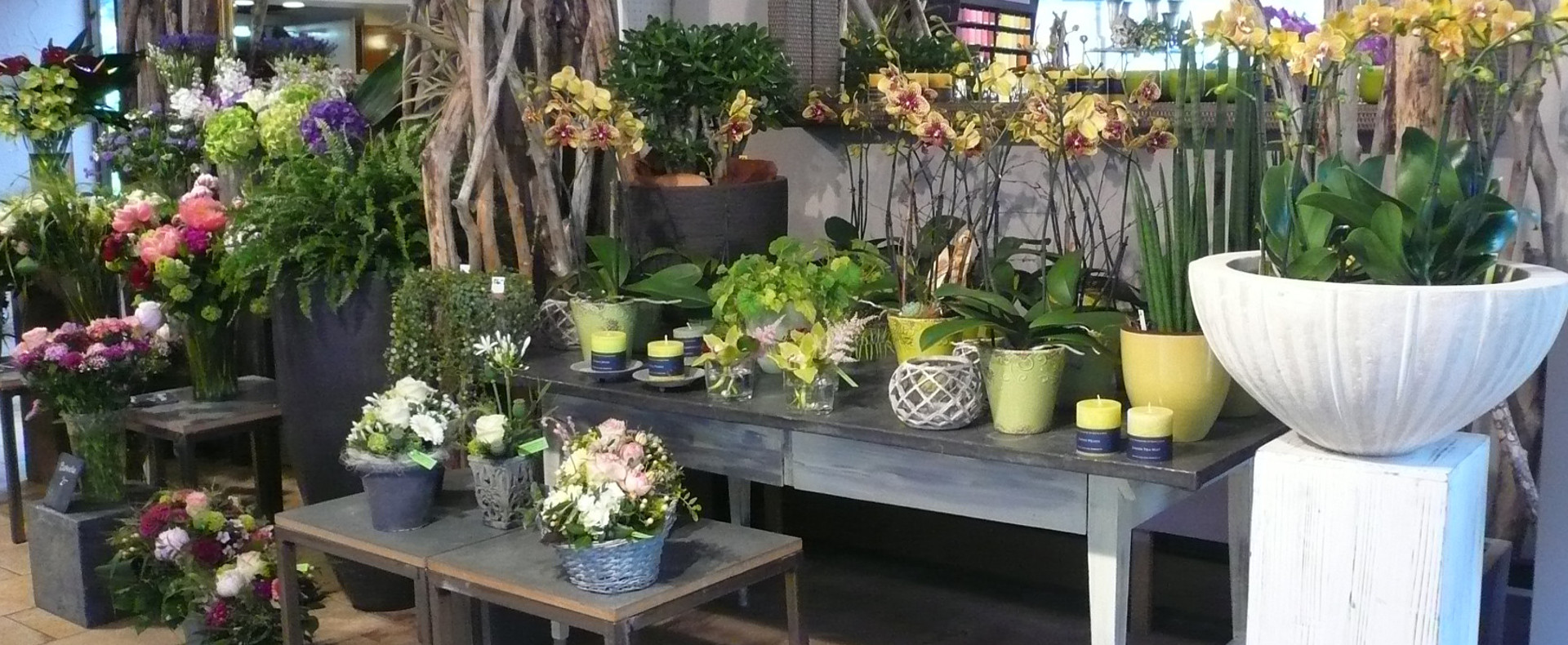 Strickler Blumen Gaerten (5)